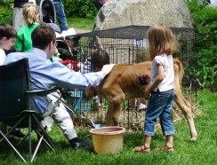 Petting-Zoo-2
